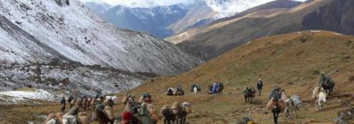 Druk Path Trek – 11 Days